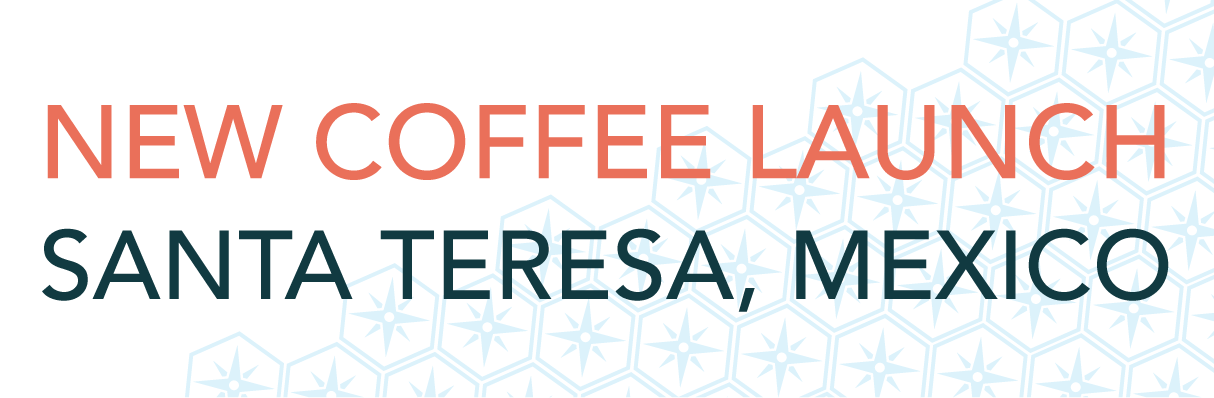 New Coffee Launch - Banner-02